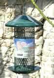 images of Peanut Bird Feeder