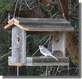 images of Homemade Bird Feeder Plans