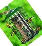 pictures of Finch Bird Feeders