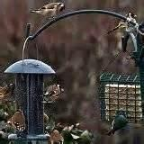 Best Bird Feeder images