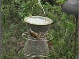 images of Ground Bird Feeders