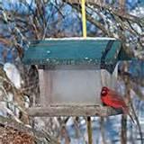 Bird Bath And Feeder