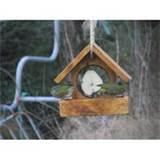 Bird Seed Feeder Images