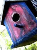 Pictures of Bird House Feeder