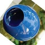 Blue Bird Feeders photos