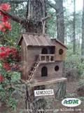 Bird House Feeder Photos