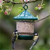 Pictures of Bird Seed Feeder