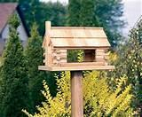 Large Bird Feeders Photos