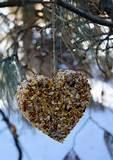 Pictures of Bird Feeders Homemade