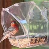 Images of Bird Feeder Window