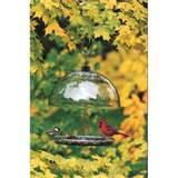 Cardinal Bird Feeder Images