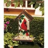 Cardinal Bird Feeder Photos