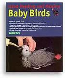 Pictures of Hand Feeding Baby Birds