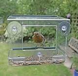 Bird Feeder Window Pictures