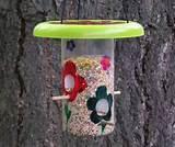 Best Bird Feeders Pictures