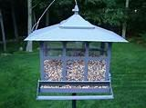 Pictures of Squirrel Proof Bird Feeder