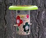 Bird Feeders For Kids To Make Pictures