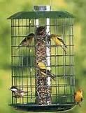 Photos of Best Bird Feeders