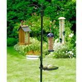 Bird Feeding Station Pictures