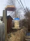 Pictures of Easy To Make Bird Feeders