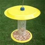 Pictures of How To Make Bird Feeders