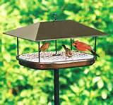 Types Of Bird Feeders Photos