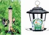 Types Of Bird Feeders Pictures