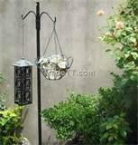Images of Bird Feeder Pole