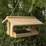 Images of How To Build Bird Feeders