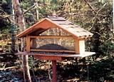 How To Build Bird Feeders