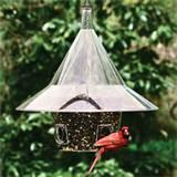Images of Bird Feeders For Cardinals