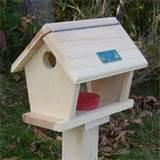 Building Bird Feeders Images