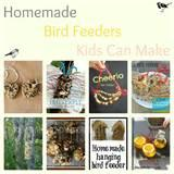 Pictures of Bird Feeders For Kids
