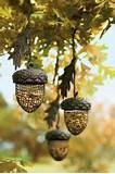 Free Bird Feeders Photos