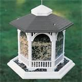 Pictures of Gazebo Bird Feeder