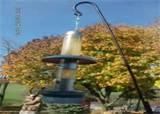 Free Bird Feeders Images
