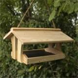 Images of Free Bird Feeders