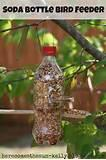 Images of Make A Bird Feeder