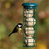 Images of Rspb Bird Feeders