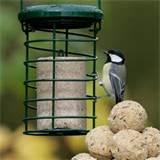 Rspb Bird Feeders Photos