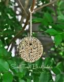 Make Your Own Bird Feeder Images