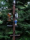 Bird Feeder Post Images