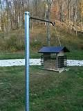 Bird Feeder Post