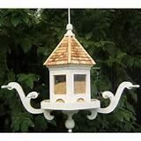 Images of The Bird Feeder