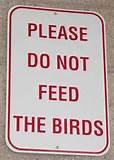 Pictures of How To Feed Birds