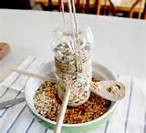 Homemade Bird Feeder Pictures