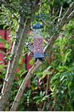 Pictures of Garden Bird Feeders