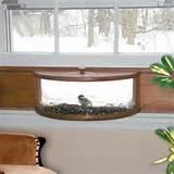 Bird Feeder Your Window Images